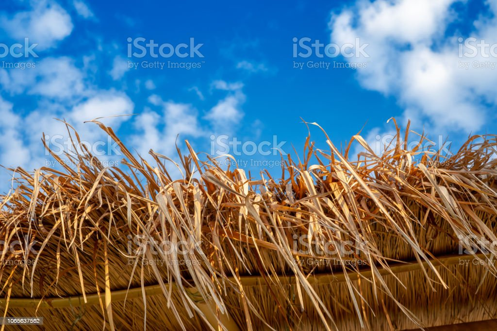 close up of thatch roof with blue sky background, straw roof stock photo