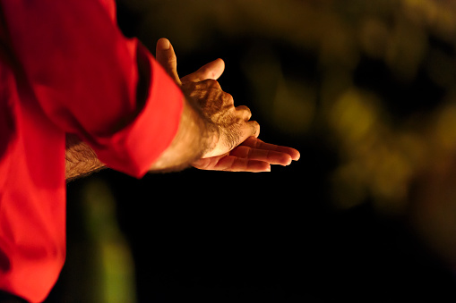 istock Close up of the clasped hands of a male flamenco dancer 531213603
