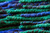 Close up of the colorful woolen yarn. green, dark blue.