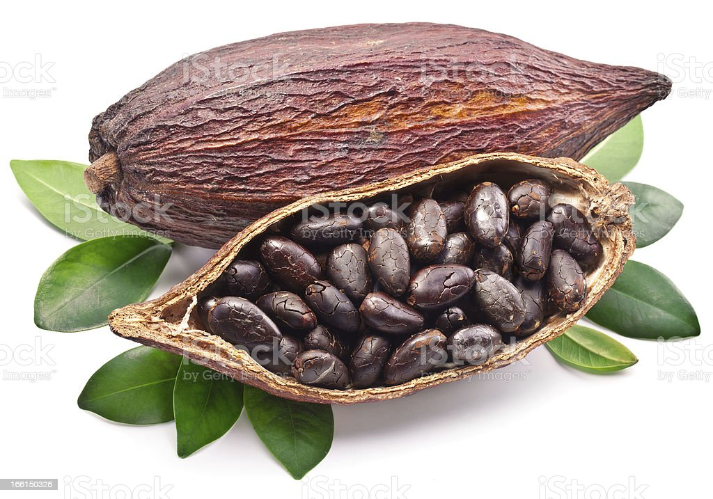 A close up of the seeds in a cocoa pod royalty-free stock photo