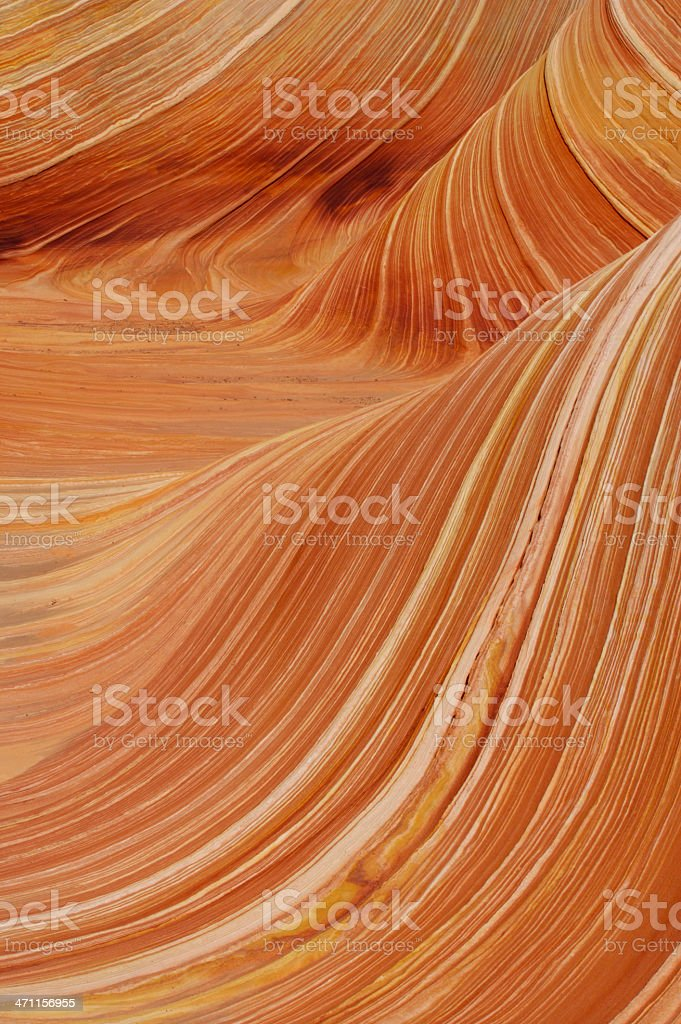 Close up of 'The Wave' royalty-free stock photo