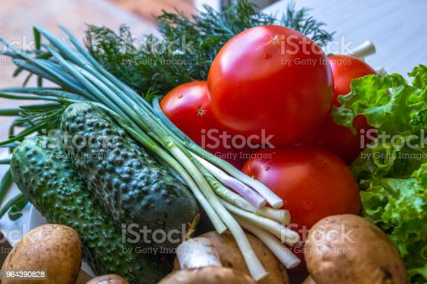 Foto de Closeup De Tomate Cogumelos De Endro E Tomate e mais fotos de stock de Agricultura