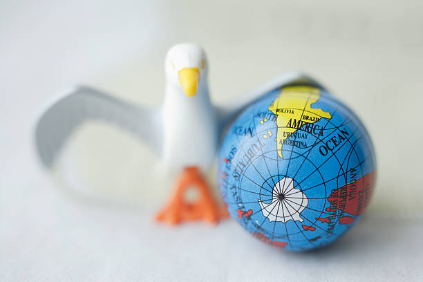 Close up of toy bird next to earth globe - foto de stock