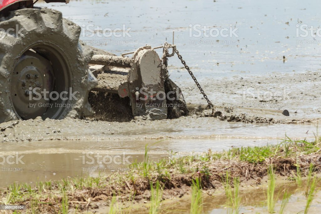 Close up van trekker ploegen Rice Field - Royalty-free Apparatuur Stockfoto