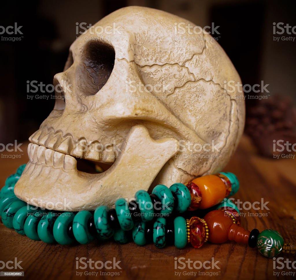 Close up of vintage Human skull model on beads stock photo