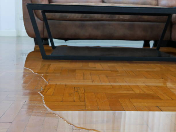 fermez-vous vers le haut de l'inondation d'eau sur le plancher de parquet de salle de séjour dans une maison - dommages provoqués par la fuite d'eau - endommagé photos et images de collection