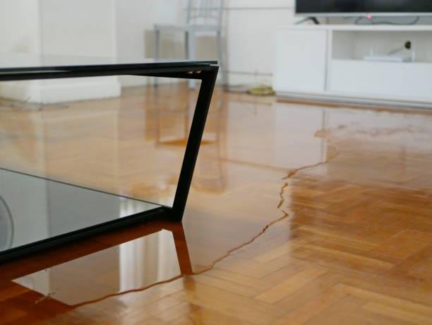 primer plano de la inundación de agua en el suelo de parquet de la sala de estar en una casa - daños causados por fugas de agua - dañado fotografías e imágenes de stock