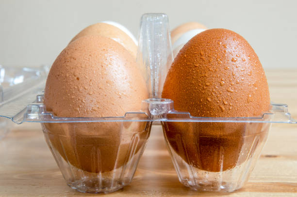 Close up of wet clean hen eggs in a plastic box on a table stock photo