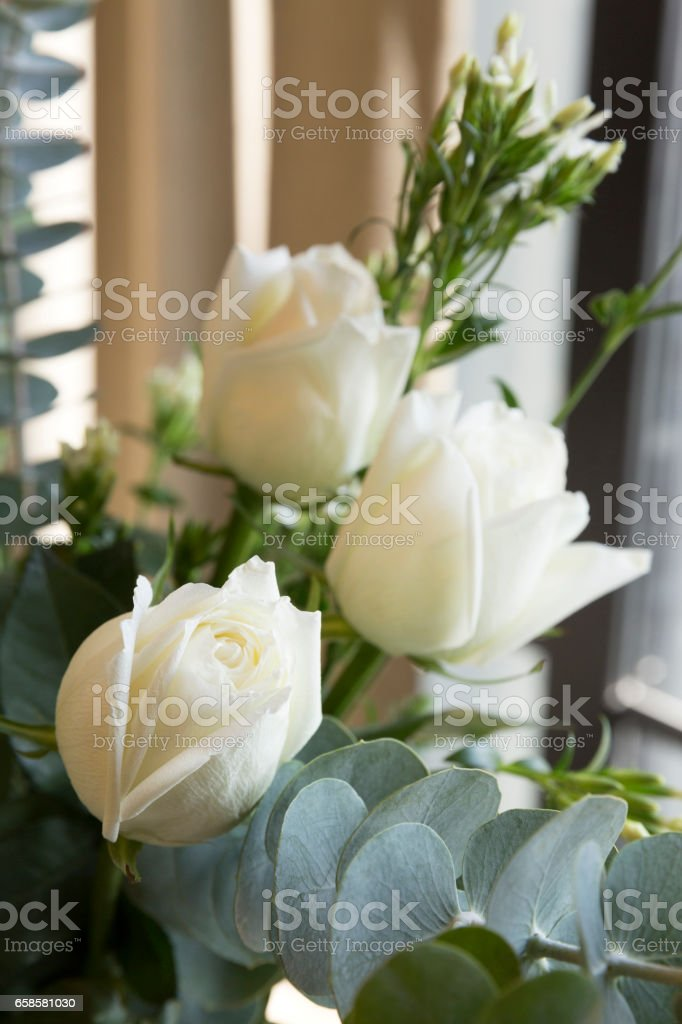 Close up of white roses – Foto