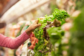 Close Up Of Woman Choosing Salad In Supermarket
