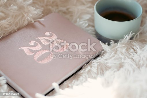1162245415 istock photo Close Up Of Woman Opening New Year 2020 Diary On bed 1202934689
