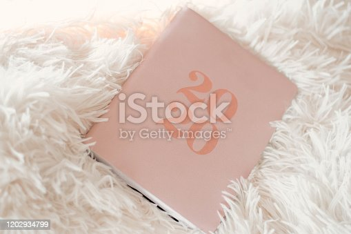 1162245415 istock photo Close Up Of Woman Opening New Year 2020 Diary On bed 1202934799