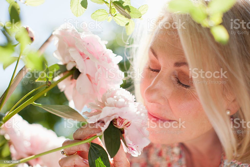 Close up of woman smelling pink flowers stock photo