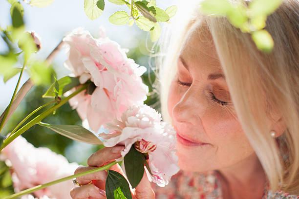 primo piano di donna profumato fiori rosa - annusare foto e immagini stock
