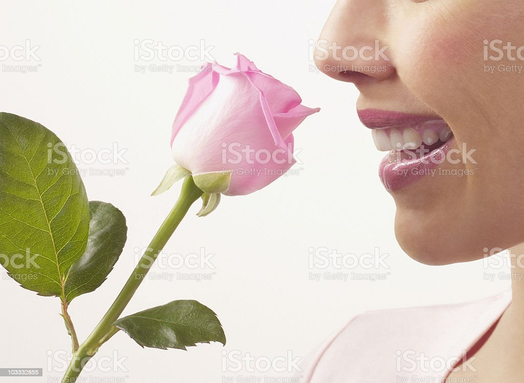Close up of woman smelling pink rose royalty-free stock photo