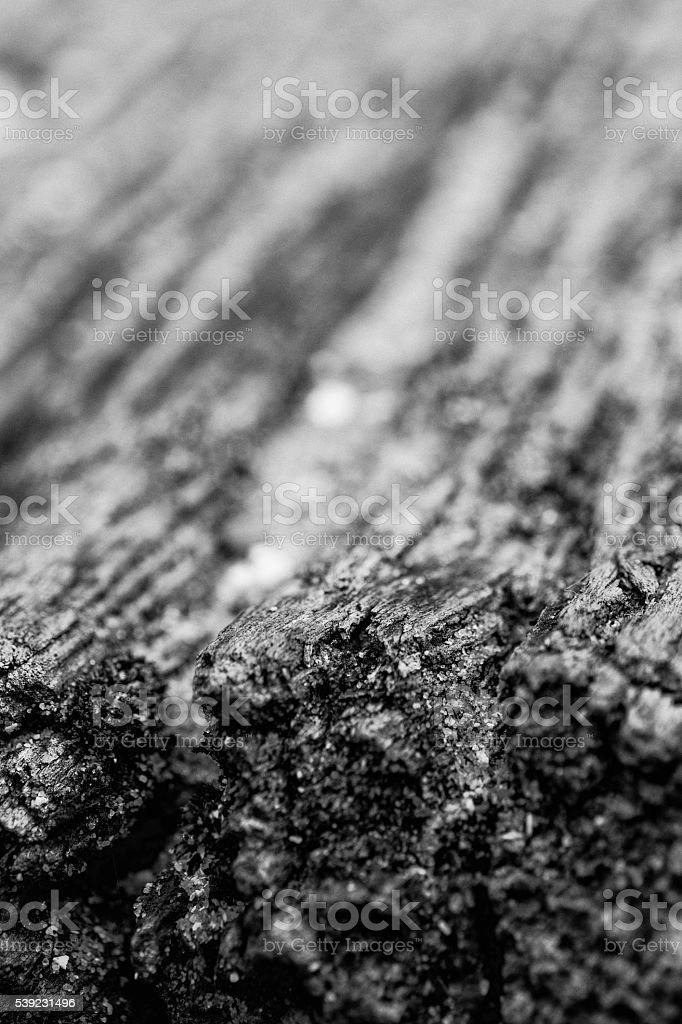 Primer plano de madera foto de stock libre de derechos