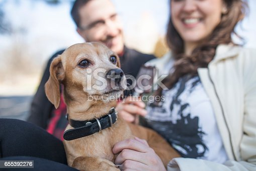 istock Close up of young couple relaxing with dog 655392276