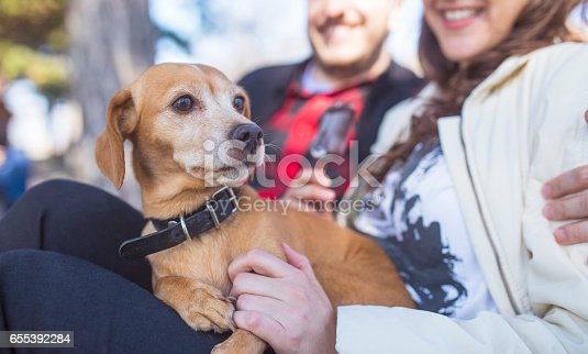 istock Close up of young couple relaxing with dog 655392284