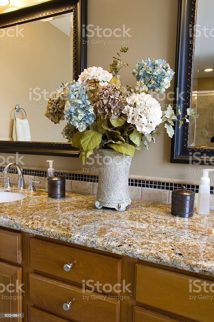 Close up on a Bathroom royalty-free stock photo
