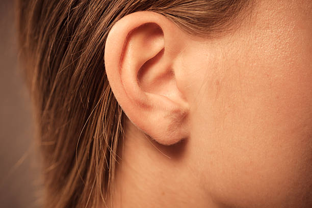 close up on female ear - ear stock photos and pictures