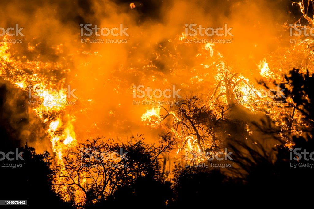 Close Up Orange Flames at Night During California Fire stock photo