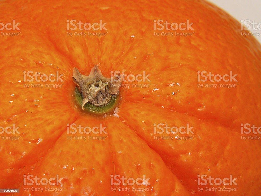 Close up orange royalty-free stock photo