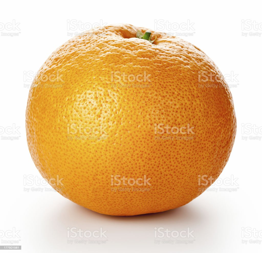 Close up photo of a grapefruit against a white background  stock photo