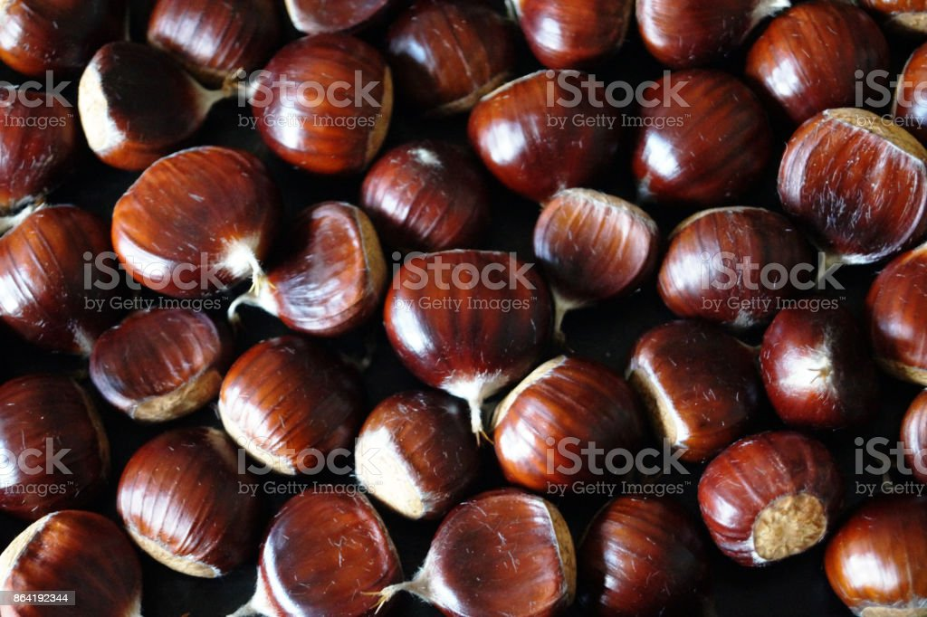 Close up photo of sweet chestnuts royalty-free stock photo