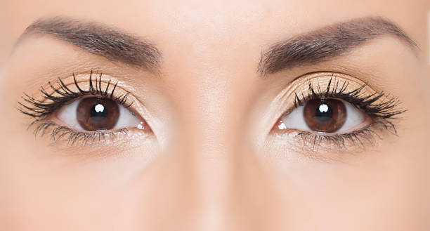 close up photo of woman eyes - eye stock pictures, royalty-free photos & images