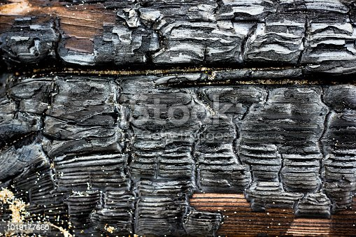 istock Close up picture of burned wood coal 1019177660