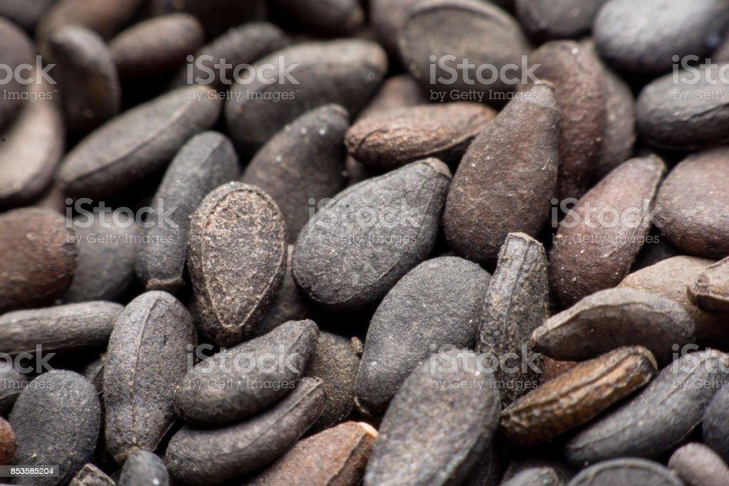 Close up Pile of black sesame seeds background stock photo