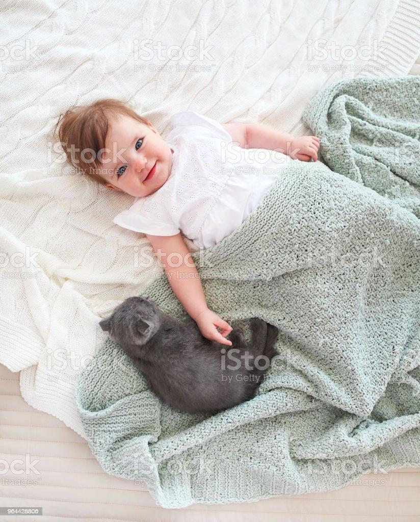 Fechar o retrato de um lindo bebê com gatinho - Foto de stock de Animal royalty-free