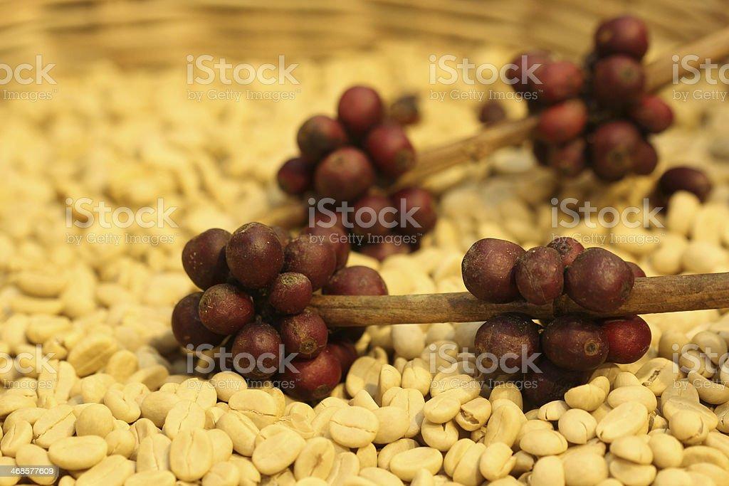 close up raw coffee bean royalty-free stock photo