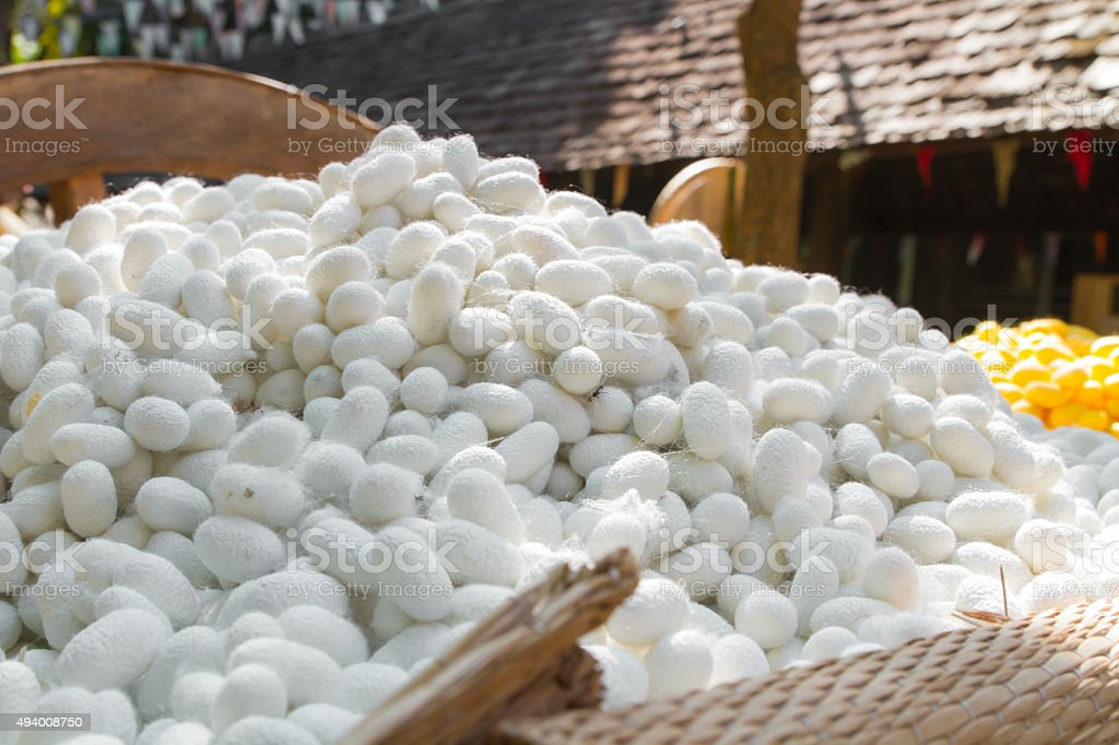 Close up raw material for  Thai silk stock photo