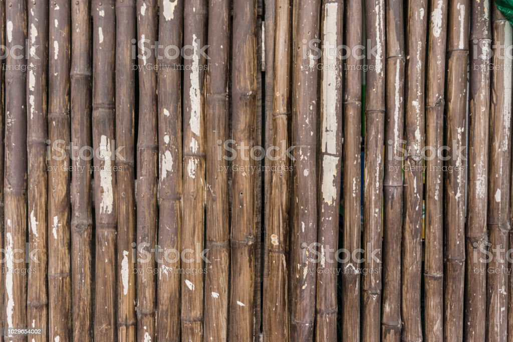7cee8739b13e Close Up Row Of Brown Bamboo As Background Stock Photo   More ...