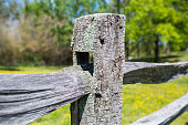 Close up shot of an old split rail wooden fence. The wood is very old and weathered. you can see the wood grain and texture. In the background you see a green meadow and then some woods behind that. The grass has yellow flowers, but the background is out of focus.