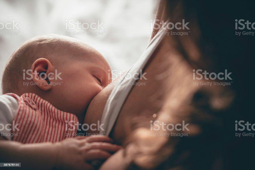 Close up shot of breastfeeding baby stock photo