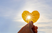 Close up shot of hand holding yellow leaf of heart shape with sun rays shining through it at light blue sky background. I love autumn concept. Copy space