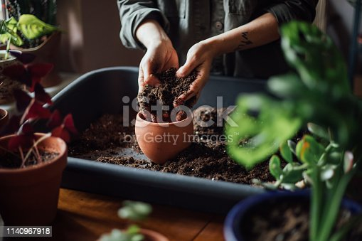 Close up shot of hands working with soil