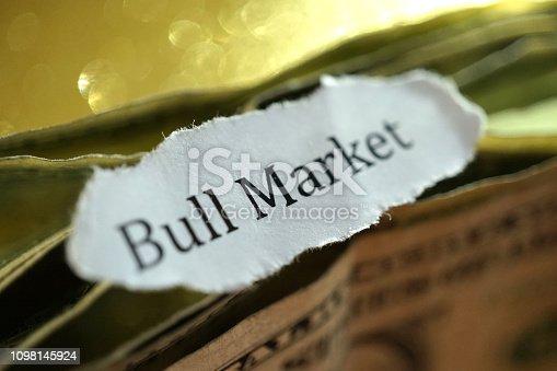 close up shot of word bull market