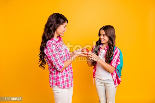 istock Close up side profile photo beautiful two people she her models ladies mom small daughter giving red apple study time see you soon wear casual pink checkered plaid shirts isolated yellow background 1142199578