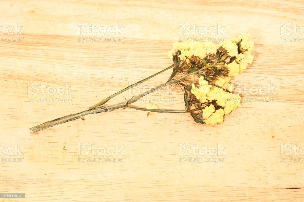 Close up single of yellow statice flower background use for close up single of yellow statice flower background use for decoration on brown wooden royalty mightylinksfo