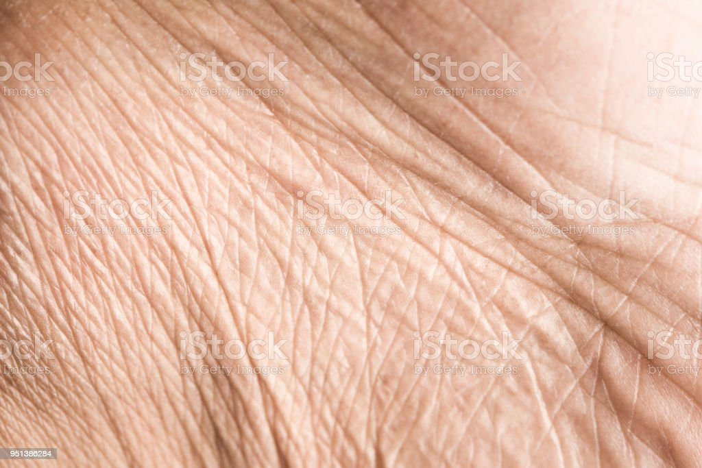 人間の体にしわと肌の質感をアップします。 ロイヤリティフリーストックフォト