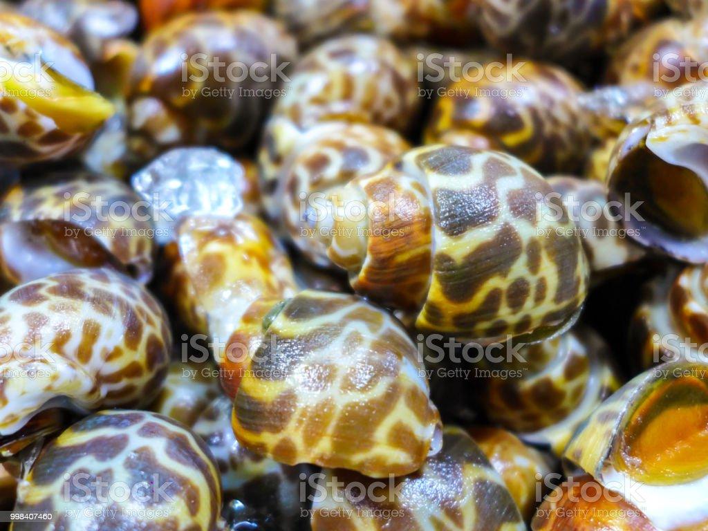 close-up babylon manchado no mercado - foto de acervo