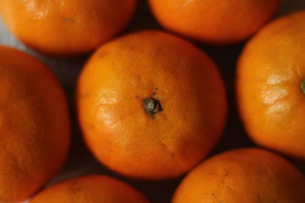 Close up tangerines stock photo