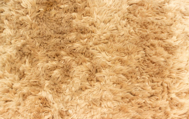 close up teddy bear wool close up teddy bear wool animal hair stock pictures, royalty-free photos & images