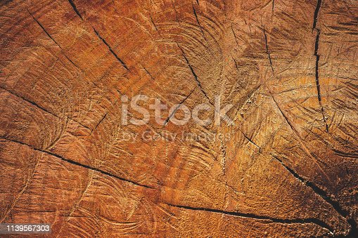 istock Close up texture of cutting timber by chainsaw. 1139567303