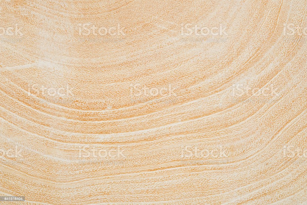 Close Up texture of tree circumference trunk after being cut. stock photo