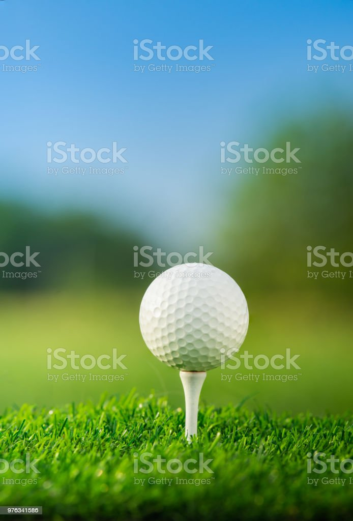 close up the golf ball on tee pegs ready to play in the green...