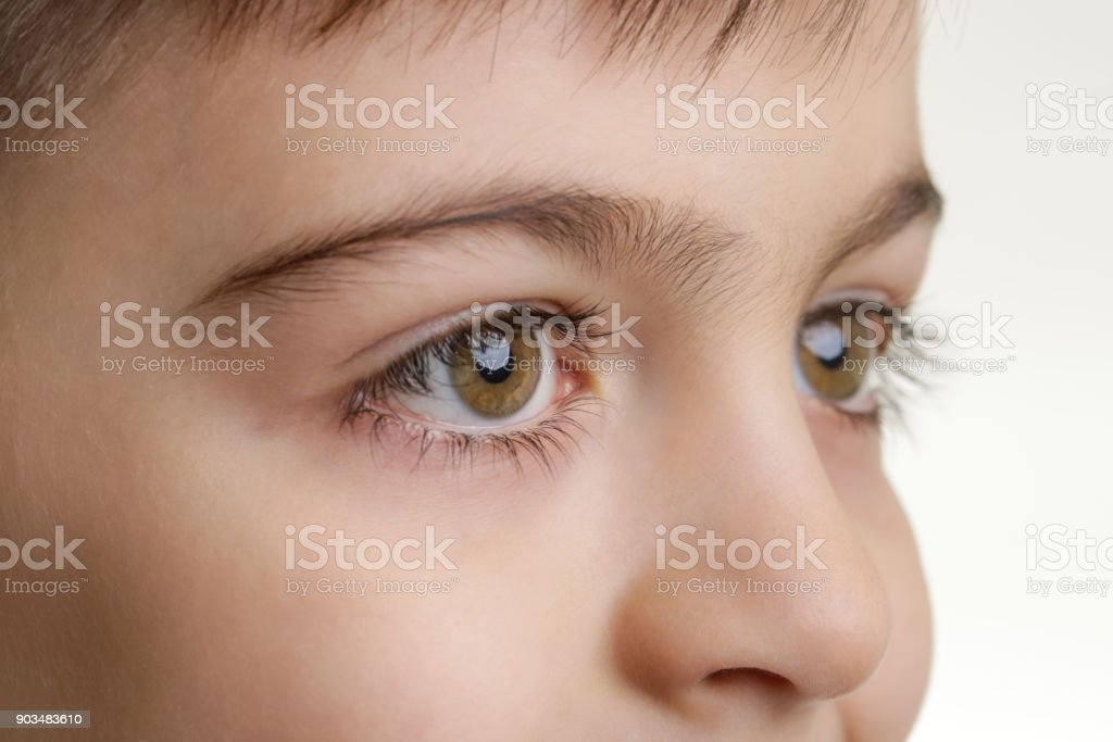 Close up view of a green boy's eye looking at camera stock photo